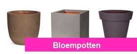 Bloempotten van Plantenplaats.nl